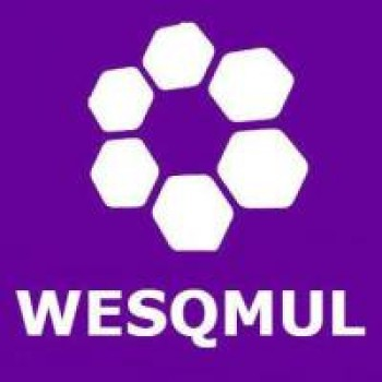 Women in Engineering Society (WESQMUL)
