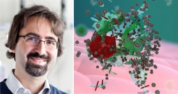 Francesco Stellacci and the novel approach to antivirals