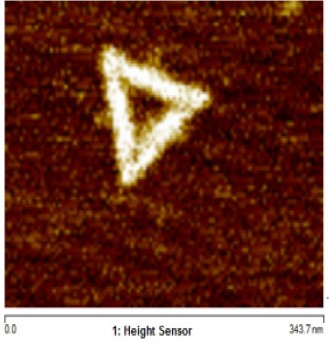 AFM image of DNA Origami triangles with a side length of ~100nm