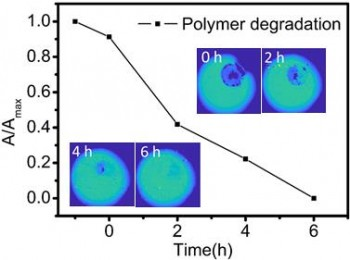 The enzymatic degradation of a polymer was monitored with LAPS images recorded using ZnO nanorods.