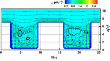 Two-dimensional density and flow fields of the liquid in the wall-neighbouring area.