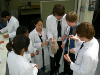Students taking part in last year's Materials Science Taster Course