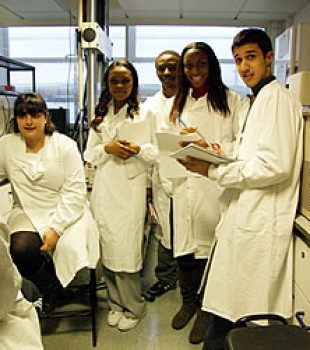 Students doing a lab practical as part of the the Tissue Engineering module.