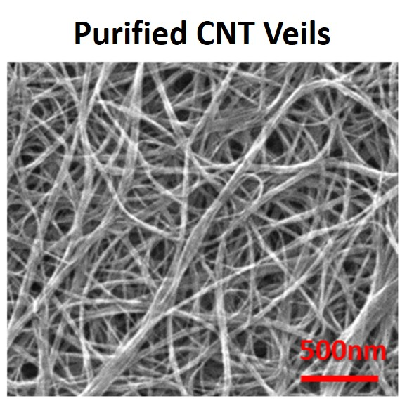 Structural self-powered health monitoring based on thermoelectricity of CNT veils and yarns