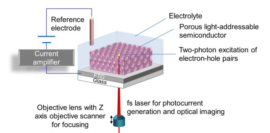 3D-photoelectrochemical imaging will be implemented using porous light-addressable semiconductors on FTO coated glass.