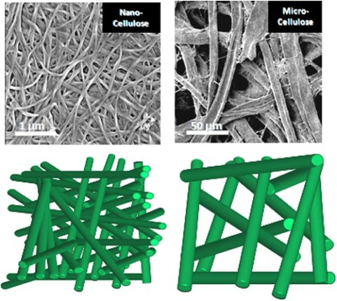 Binder-free fully biobased all-cellulose composites based on nano-sized cellulose fibres through increased intra-fibre H-bonding